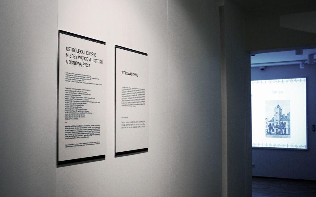 Wprowadzenie na wystawę